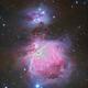 The Orion Nebula,                                Gabe Shaughnessy
