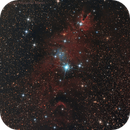 NGC2264 - Cone Nebula,                                Massimo Micieli