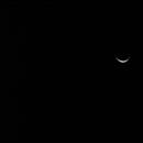 A Quick Venus,                                caheaton