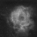 Rosette Nebula (NGC 2237) Ha,                                Larry