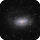 "M63 or NGC5055, ""Sunflower"", remake.,                                Vadim Kozatchenko"
