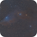Blue Horsehead Nebula  from B2 Site,                                Eric Watson