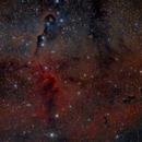 IC1396 - Elephant's Trunk,                                francopanetta