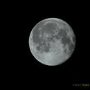 Waning Gibbous Moon,                                NewLightObservatory