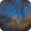 The Elephant's Trunk Nebula  IC1396  Sh2-131,                                JohnAdastra