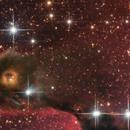 IC 1396 - Elephant*s Trunk Nebula closeup,                                Michael S.