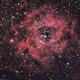 Rosette Nebula,                                Ryan Smith