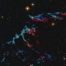 Bat Nebula,                                Szymon Marzec