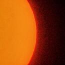 Sun details,                                Vital