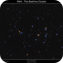 M44 - The Beehive Cluster,                                Brice Blanc