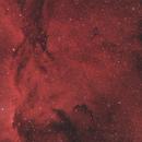 NGC6188/6193/6164,                                Djt