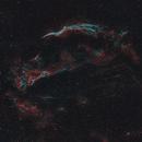 """The Western Veil Nebula (NGC 6960, """"Witch's Broom"""") - supernova remnant,                                Sasho Panov"""
