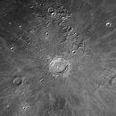 Copernicus,                                Roberto Silva