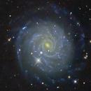 NGC 3344,                                Frank Colosimo