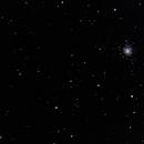 M 79 globular cluster - 2 febbraio 2013,                                Giuseppe Nicosia