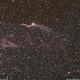 Western Veil (NGC 6960),                                Rui Loureiro