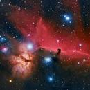 Horsehead Nebula,                                Monty