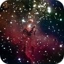 Eagle Nebula (Messier 16),                                Bruce Rohrlach
