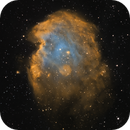 Gas Monkey, That Funky Monkey (NGC 2174 - Monkey Head Nebula) w/two asteroids,                                Jason Doyle Sr