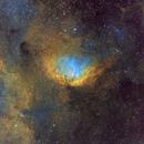 The Tulip Nebula, Hubble Palette,                                Eric Coles (coles44)