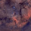 IC1396 (Elephant's Trunk),                                ParyshevDenis