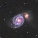 M51 Whirlpool,                                petelaa