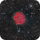 IC 5146  Cocoon Nebula,                                GJL