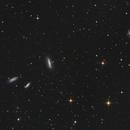 cuarteto de grulla,                                Fernando Fogel Observatorio Capilla del Monte