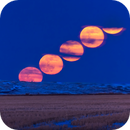 The Full Moonrise of March  2020,                                Alan Dyer