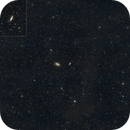 M81 Widefield (135mm),                                TheCounter