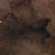 Scorpius Dark Nebula,                                Gary Imm
