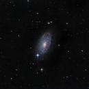 M63 - Sunflower Galaxy, LRGB (AT10IN),                                Sam Sabbagh