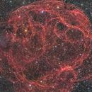 Spaghetti Nebula (Sh-2-240),                                Pavle Gartner