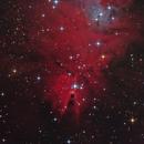 The Cone Nebula & Christmas Tree Cluster (NGC 2264),                                Marcel Nowaczyk