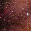 IC 1396 The Elephant Trunk Nebula,                                Moorefam