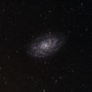 M33 La Galassia del Tiangolo,                                Massimo Miniello