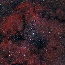 IC1396 - Nébuleuse de la Trompe de l'Eléphant,                                Nicolas Aguilar (Actarus09)