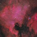 NGC7000/IC5070 – 2018,                                  Peter Folkesson
