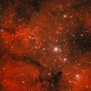 IC 1396,                                Manfred Ferstl