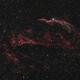 Western Veil nebula and Pickering's Triangle - Wide Field   (Ngc 6960) Broadband only,                                Giambattista Rizzo