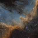 The Cygnus Wall,                                Andrew Marjama