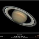 Saturn with better seeing,                                Conrado Serodio