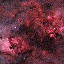 Cygnus Widefield HaRGB,                                Gernot_Obertaxer