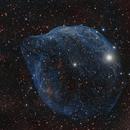 Sh2-308 Dolphin Nebula,                                Matthew Chan