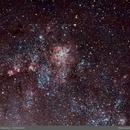 Tarantula Nebula,                                Marco Gulino