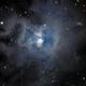 The Iris Nebula,                                Kevin Dixon