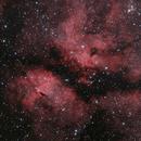 IC 1318 - Butterfly Nebula - Schmetterlingsnebel im Schwan,                                Michael Hoppe