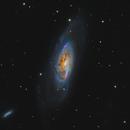 Messier 106 (lrgb) - ASI294MM First Light,                                Teagan Grable