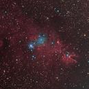 Cono nebula,                                Ric