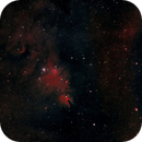 NGC 2264 Cone Nebula,                                Vijay Vaidyanathan